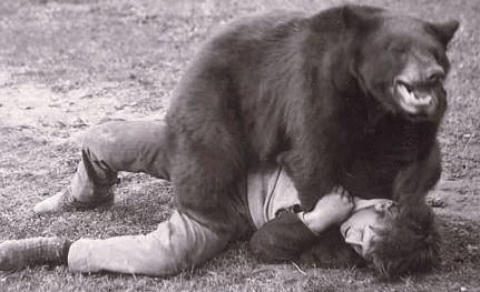 BEAR Wrestle